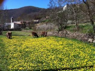 Sarroca de Bellera - Pallars Jussà