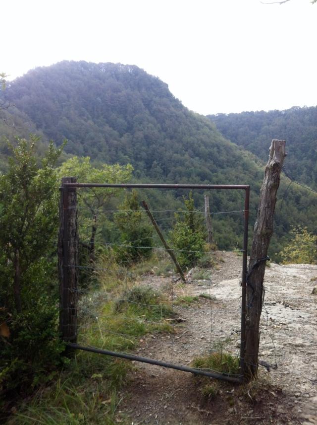 Porta_001_Cabreres_1