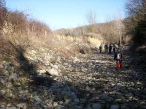 ABM-FLUVIA_Feb2008_0019